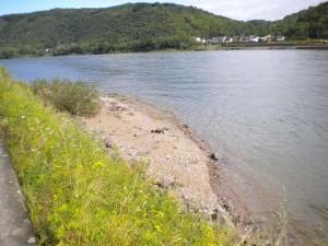 SWL-Milieus-Deutschland-Rhein-Remagen-Sandbank